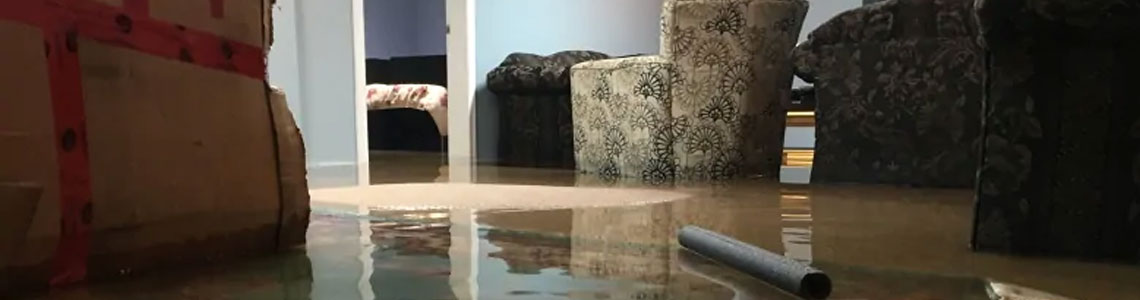 Basement Flooding Cleanup