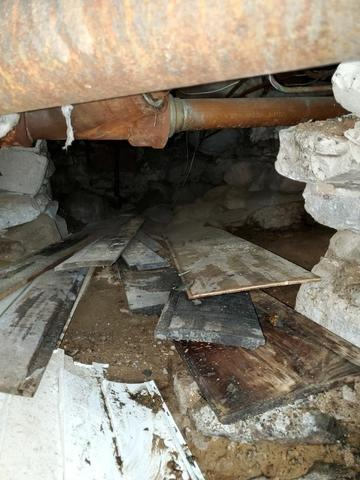 Wood materials and sewage waste in the crawl space